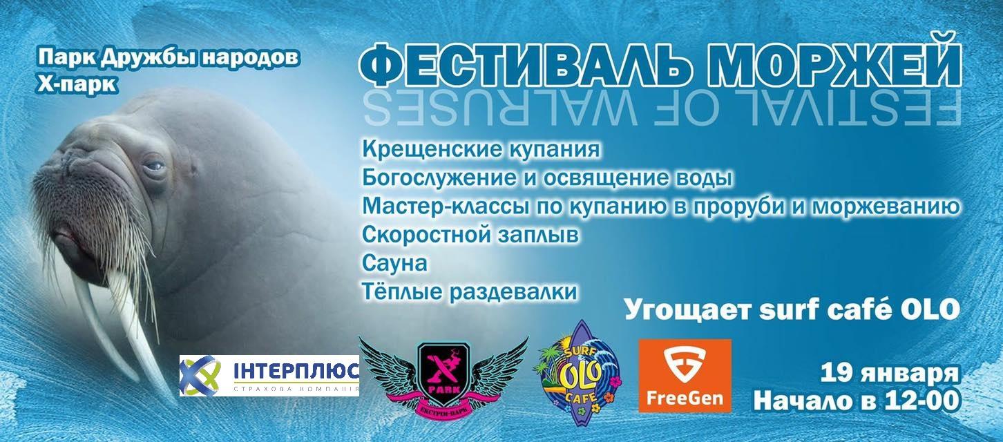 фестиваль моржей