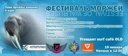 фестиваль моржей1